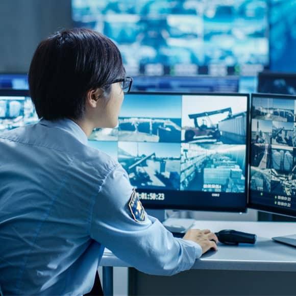aviglon video monitoring service