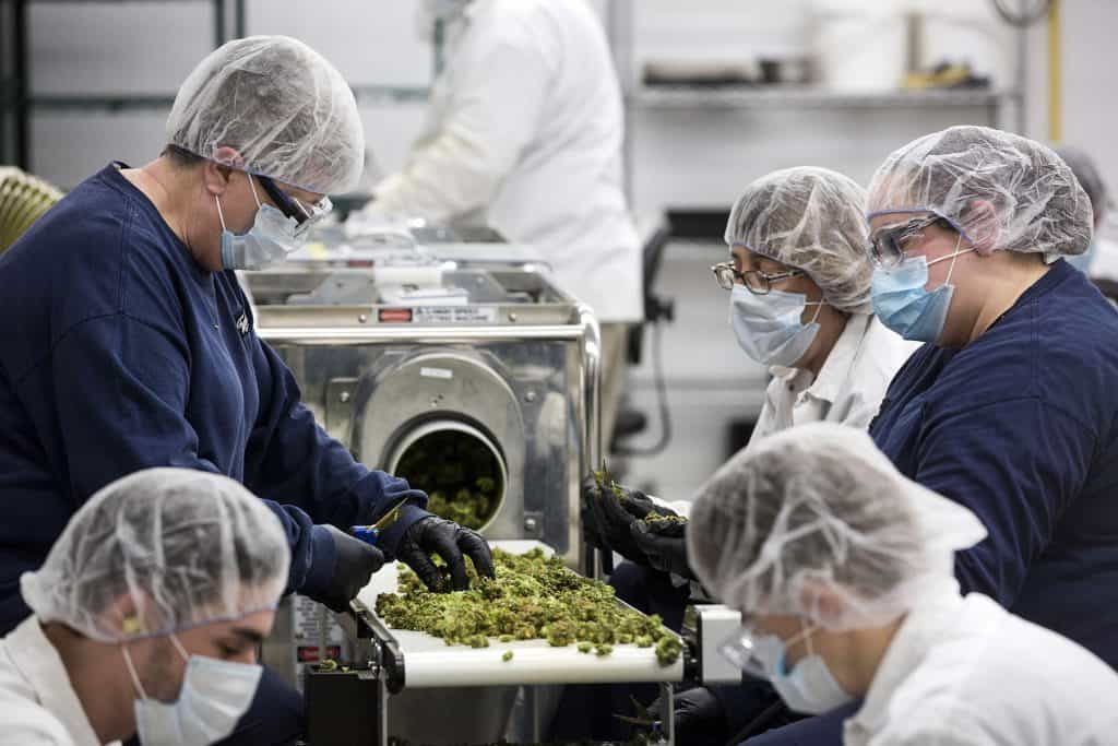 cannabis packaging facility security system
