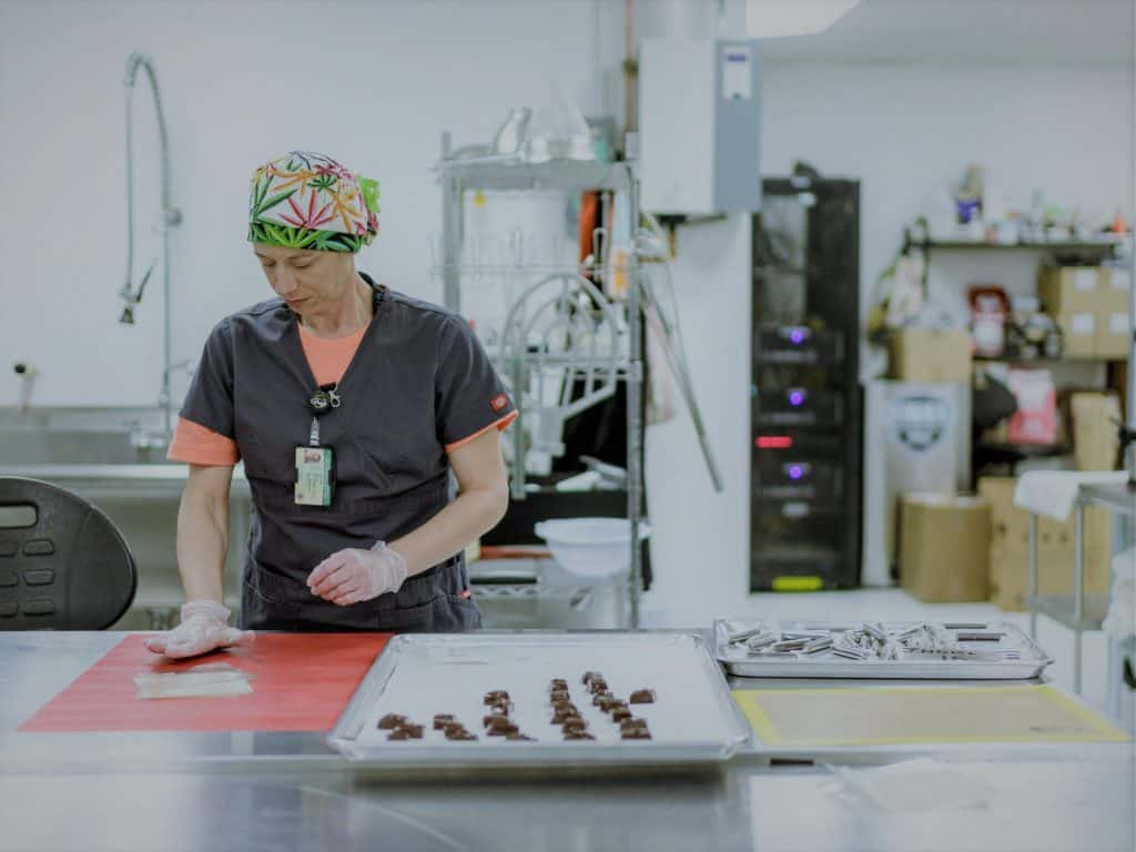 person processing cannabis into product 2