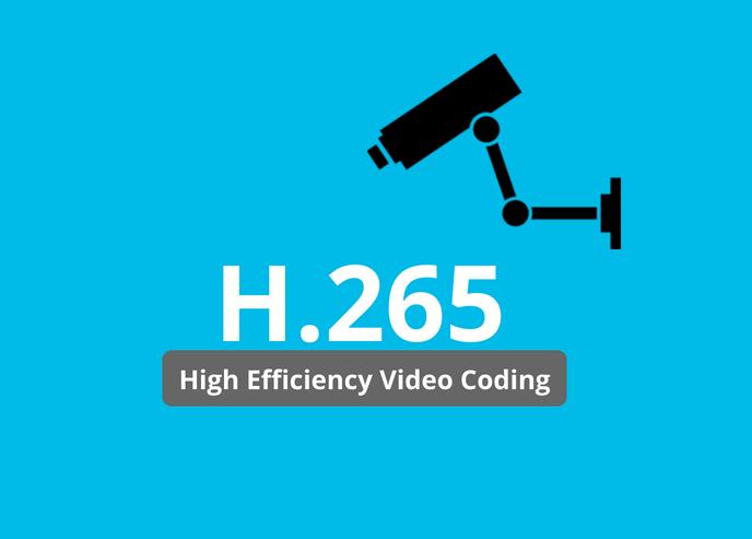 H.265 camera storage